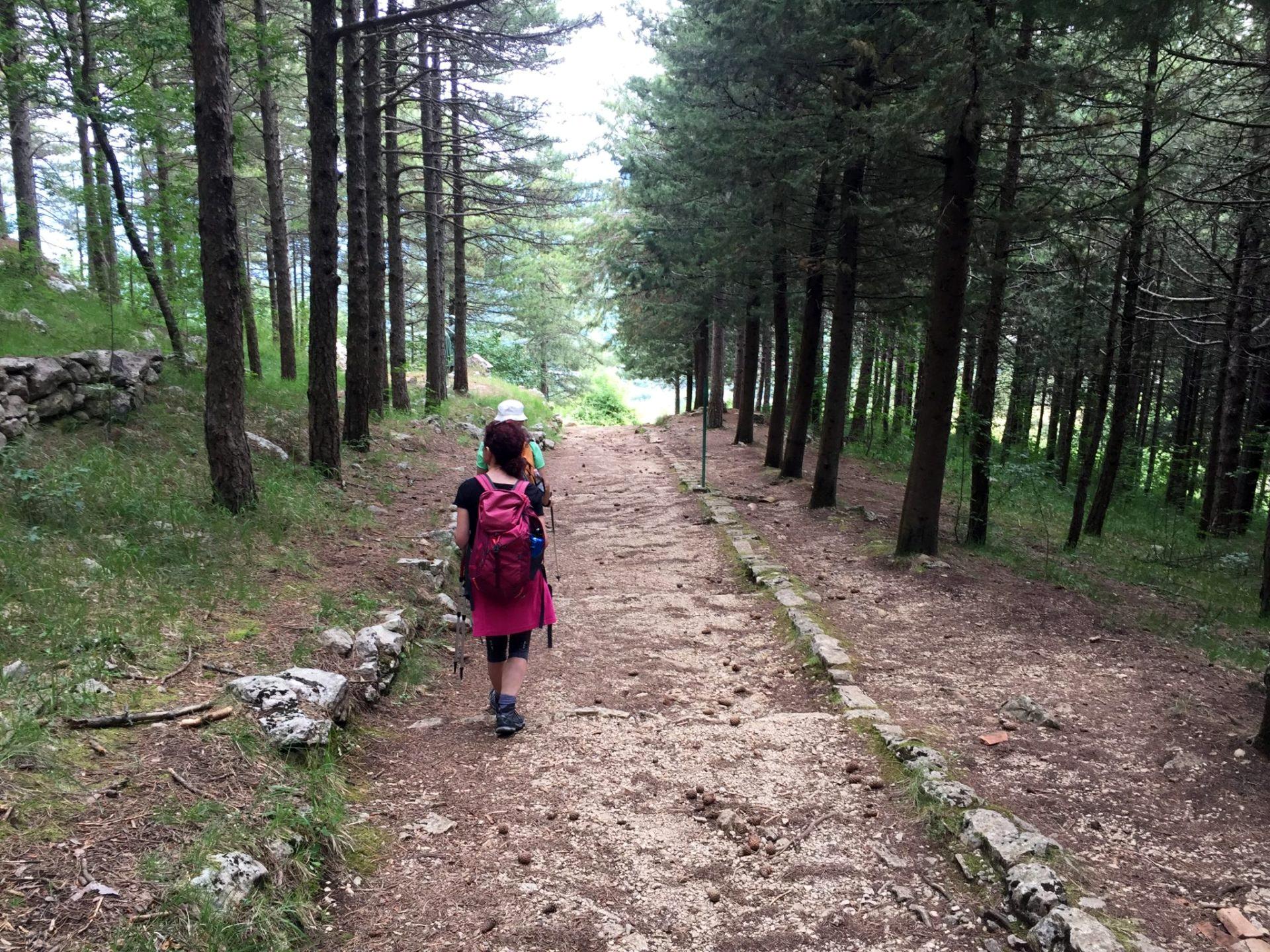 sentiero molisano via matris castelpetroso isernia molise